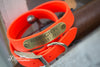 Bright Orange Hunting Dog Collar With Engraved Name