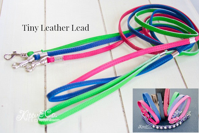 Tiny Leather Lead 3/8 inch wide