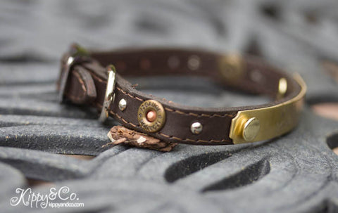 Small 12 Gauge Pet Collar