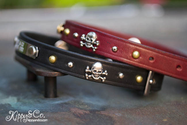 Leather dog collar with skull and cross bones, brass and nickel spots and brass spots, personalized name plate