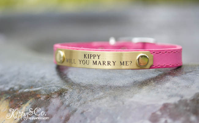 Small Lightweight Collar with Personalized name plate