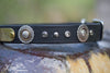 Leather Dog Collar With Antique Silver Floral Conchos, Silver Spots and Black Diamond Crystals, Personalized Name Plate