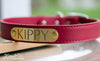 Leather Dog Collar With Personalized Name Plate