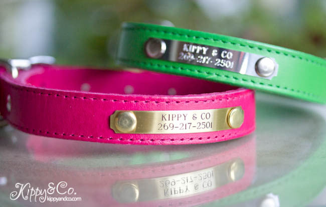 Personalized Leather Dog Collar, 3/4 inch wide