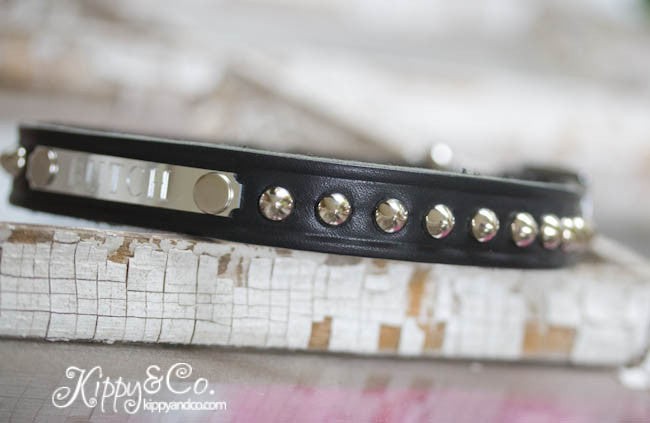 Leather Dog Collar with Personalized Name Plate and silver cone studs
