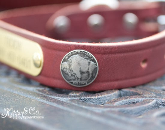 Leather Buffalo Concho Dog Collar With Engraved Name Plate