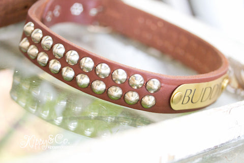 Studded Leather Dog Collar