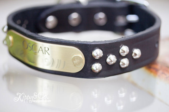 Personalized Black Leather Studded Collar  With Engraved Name Plate