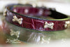 Brgundy Crocko Leather Dog Collar with Silver Bones