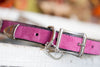 Pink Suede Dog Collar With a Southwest Silver Vintage Concho