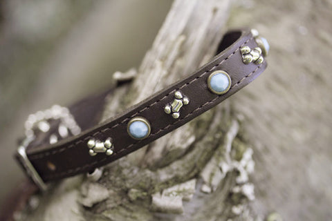 Brown Leather Turquoise and Bone Dog Collar