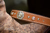 Equestrian Concho Crystal Dog Collar With Personalized Engraved Name Plate
