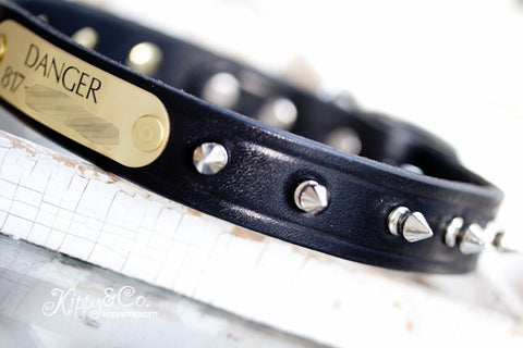 Leather Spike Dog Collar Personalized