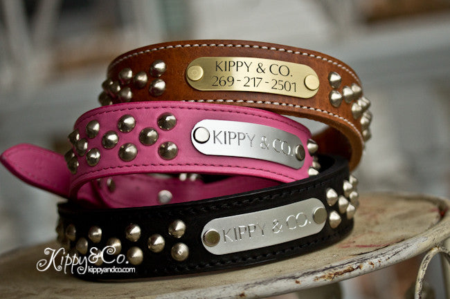 Studded Leather Collar With Enraved Brass or Silver Name Plate
