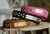 Leather Studded Dog Collar With Engraved Name Plate in Brass or Silver