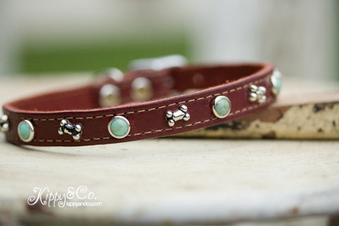 Leather Dog Collar With Turquosie
