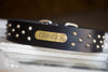 Bullmastiff Leather Studded Dog Collar 2 inch wide with Personalized Name Plate