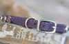 Purple Collar with purple swarovski crystals and a personalized name plate