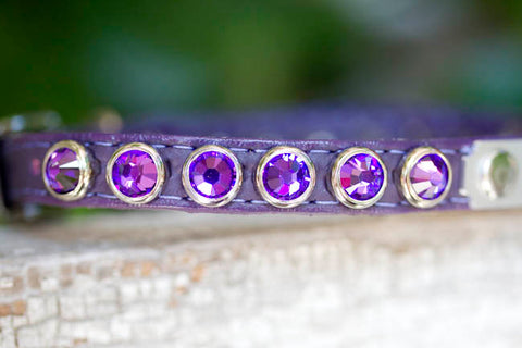 Small Crystal Dog Collar