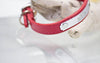 Red Leather Collar 1/2 inch wide with Personalized Name Plate