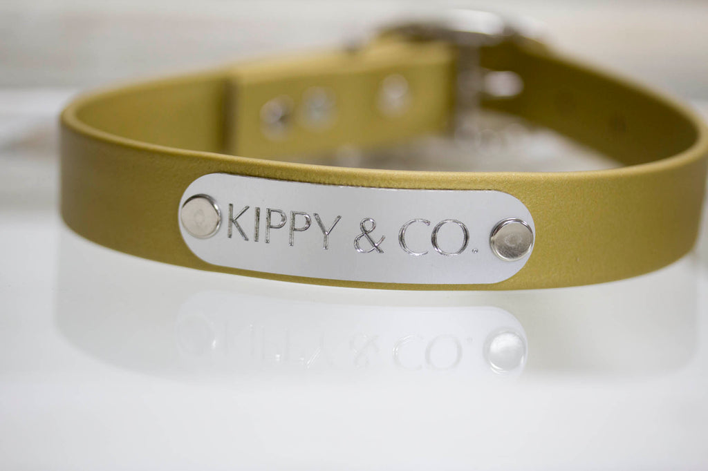 Gold Waterproof Collar