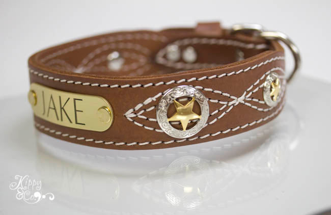 Leather Collar with Texas Stars conchos and engraved name plate