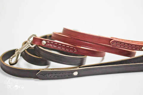 Leather Stitched Dog Leash