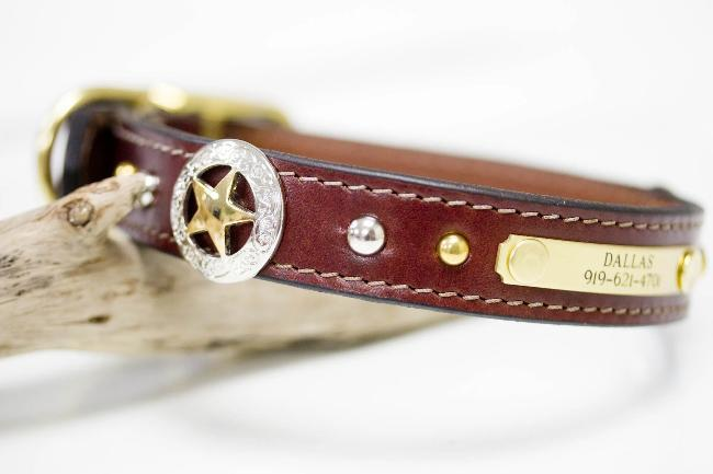 Texas Star Leather Collar with nickel and brass spots and personalized name plate