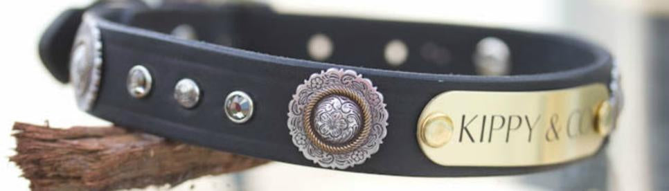 Leather Dog Collar with Antique Silver Floral Concho