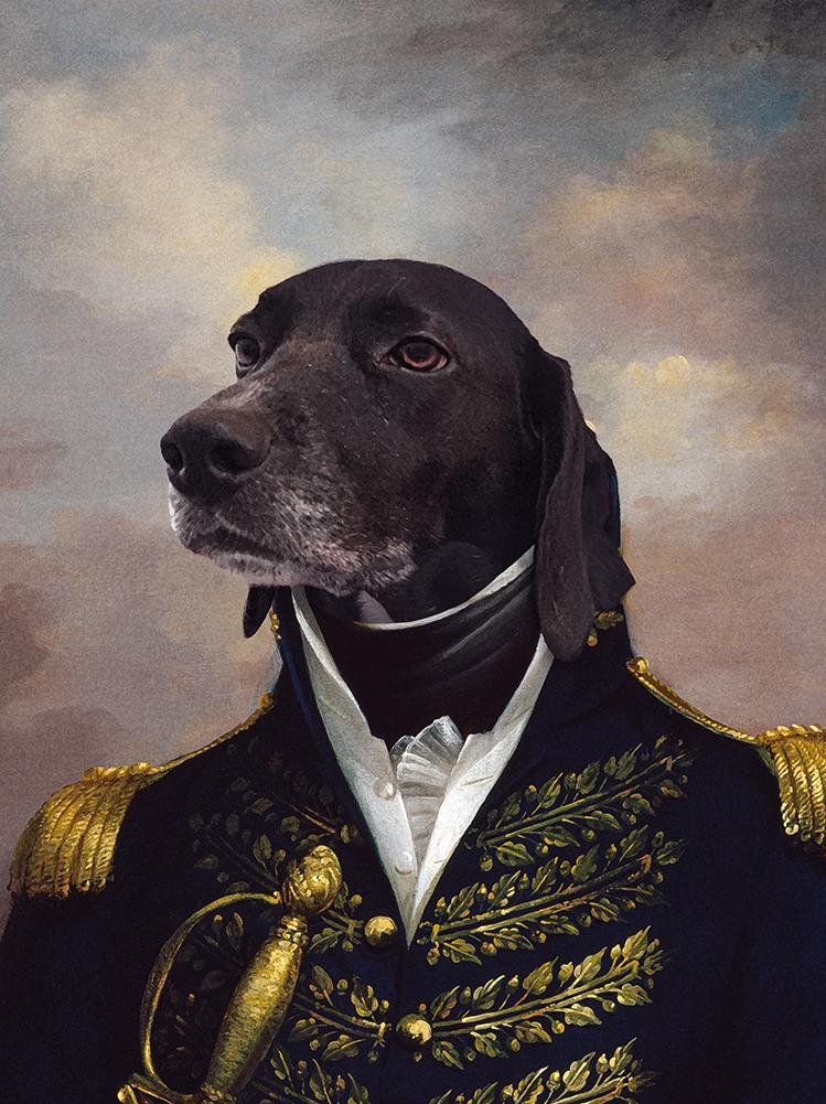 The Admiral Custom Pet Canvas (Male) - Printy Paw