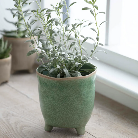 Positano Flower Pot (Foliage Green)