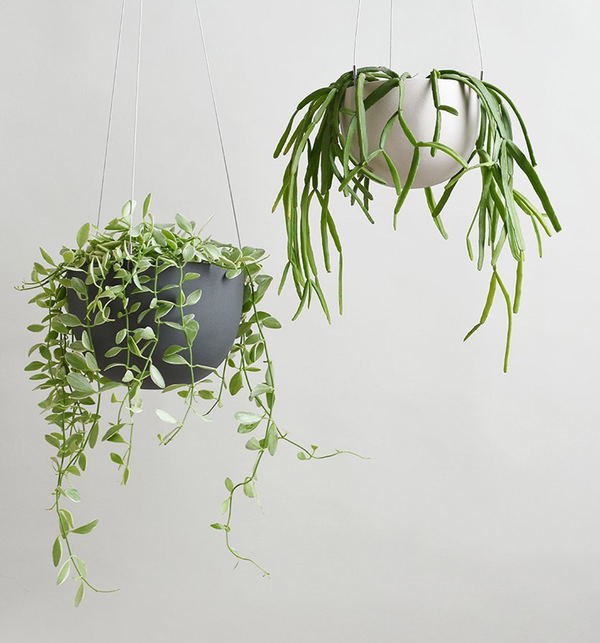 Hanging Plant Pot, 140 mm
