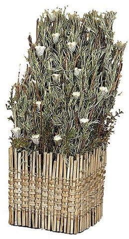 0-019575>Dried Plant In Cane Pot Decorative Accent