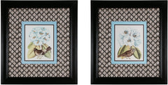 0-013136>24 inchh Birds and Blooms Dark Brown
