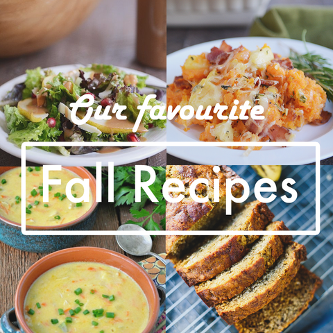 Favourite Fall Recipes