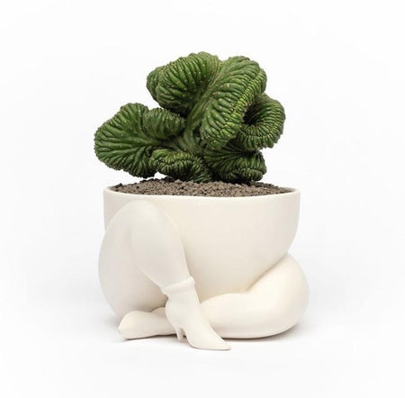 Parra - A High heeled two legged planter (White)