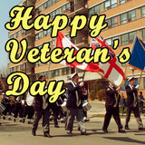 Veterans Day Is A Day Of Celebration Not Sadness