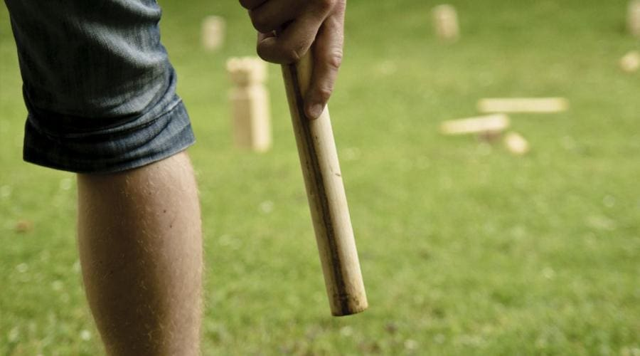 a person holding a baseball bat on a field