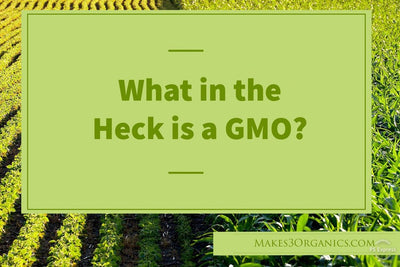 Reboot ~ Impact of GMOs on our Health