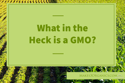 What in the Heck is a GMO?