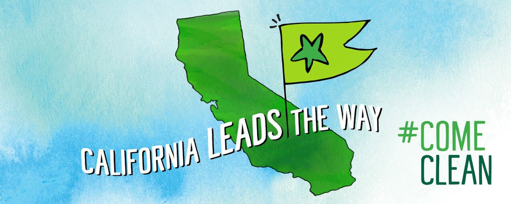 California Passes the Cleaning Product Right to Know Act!