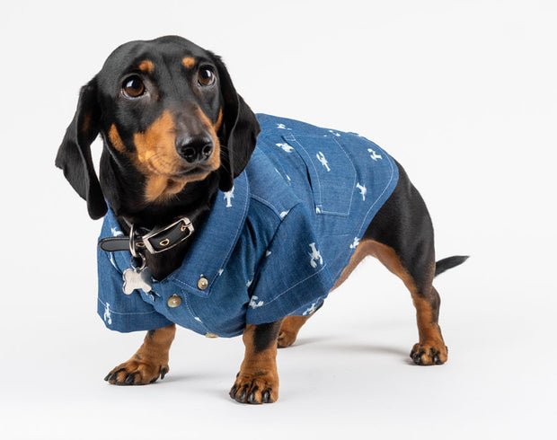 Doggo shirts
