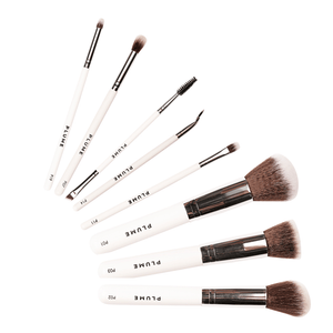 9 Pcs Professional Makeup Brush Set (Face + Eye) with Marbelicious Makeup Pouch