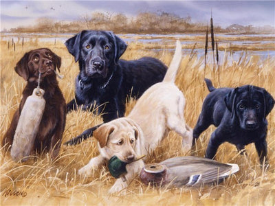 Puppies Collage Set - 5d Diamond Painting Kit