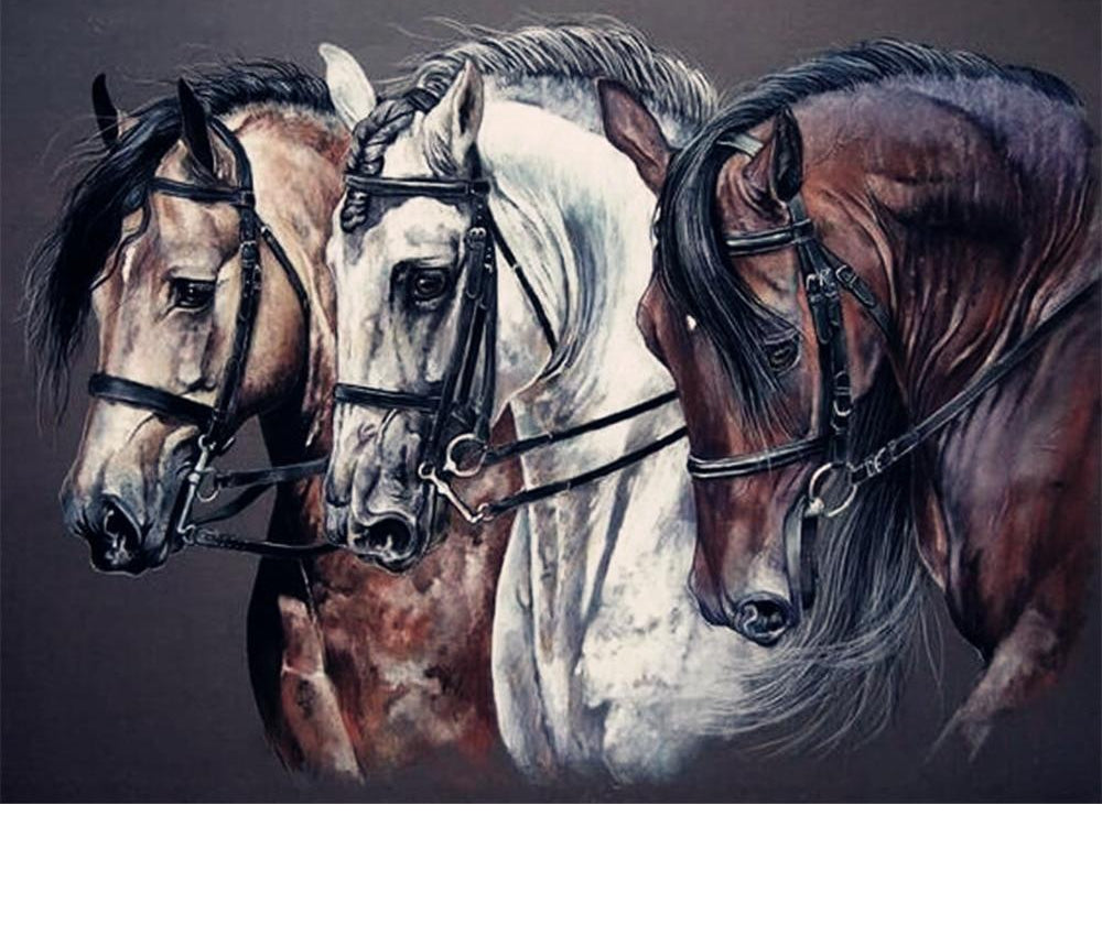 Horses Closeup Illustration - 5d Diamond Painting Kit