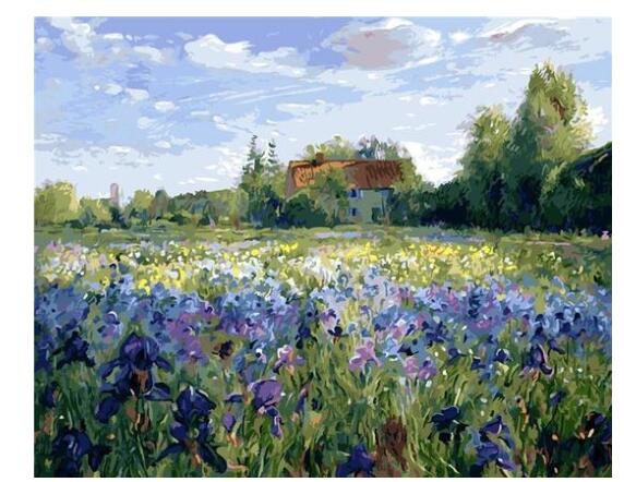 Timothy Easton Evening at the Iris Field - Paint by Numbers Kits for Adults