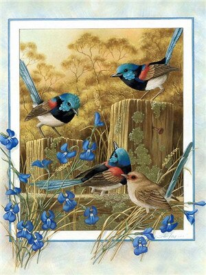 Nature And Birds - 5d Diamond Painting Kit