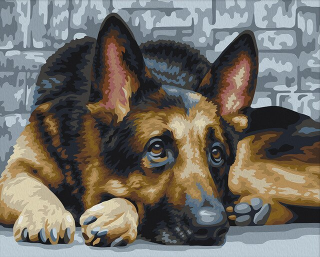 German Shepard - Paint By Numbers Kit