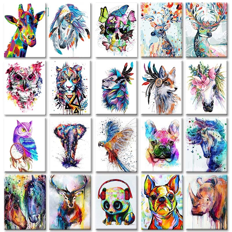 Colorful Animals Portraits