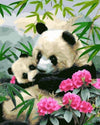 Panda Mom and Son - Paint by Numbers Kits